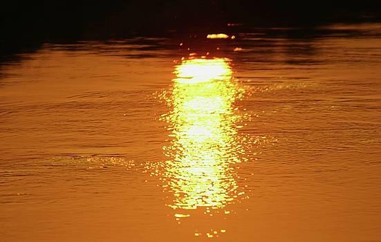 Martina Fagan - Watery Sunset