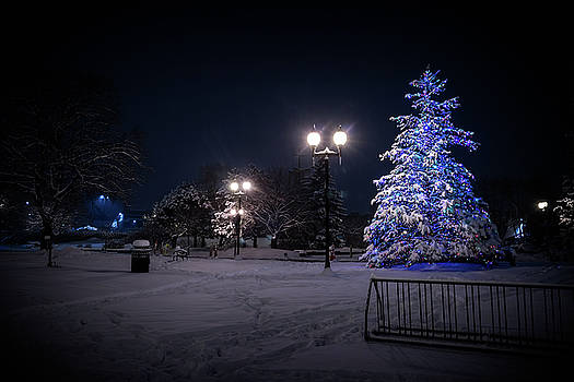 Wauwatosa Christmas - 2016 by CJ Schmit