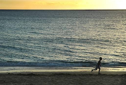 Wave Runner by Dan Holm