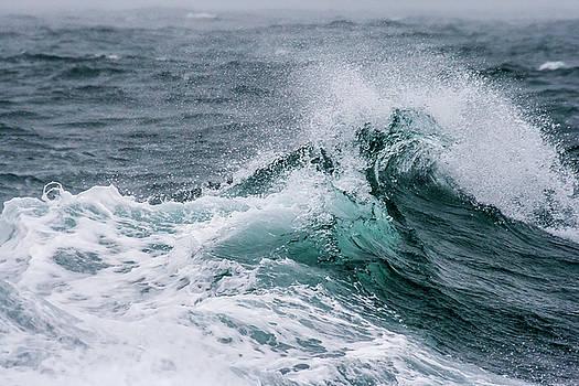 Wave by Sophie De Roumanie