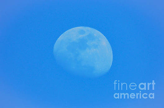 Waxing Gibbous Phase by Mim White