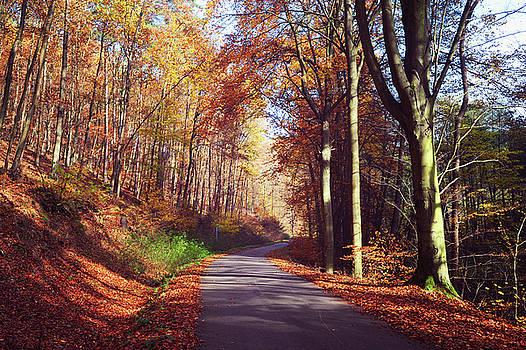 Jenny Rainbow - Way through the Autumn