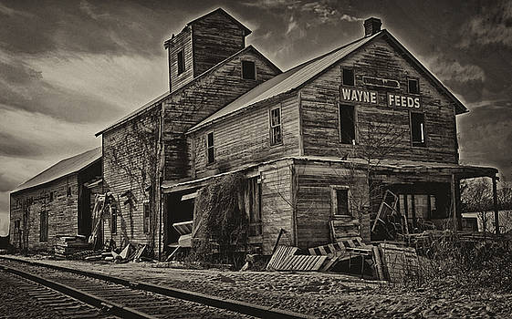 Wayne Feeds - Sepia by Dan P Brodt Photography