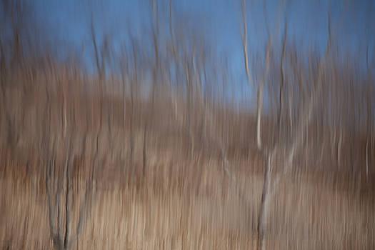Karol  Livote - Weary Reflections