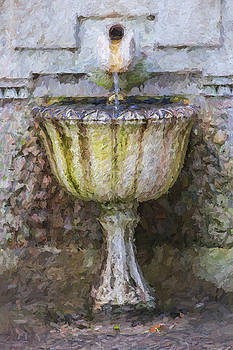 Weathered Stone Fountain Of Portugal by David Letts