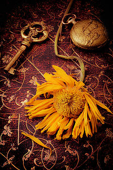 Weathered Sunflower With Gold Key by Garry Gay