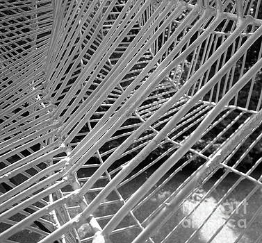 Web Wired by Cathy Dee Janes
