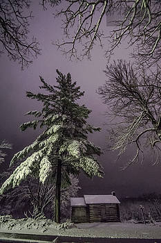 Weed Park Snake Shed in Snow by Paul Brooks