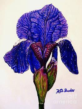Weeping Iris by Kimberlee Baxter