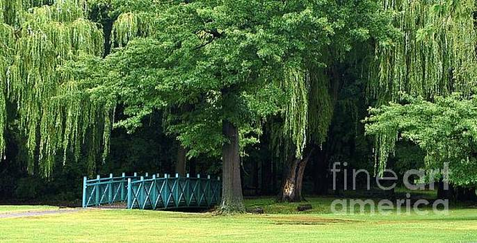 Weeping Willows and Japanese Footbridge by Lilliana Mendez