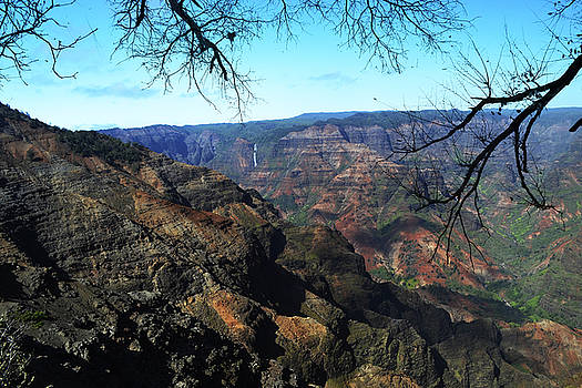 Weimea Canyon Look Out by Dennis Begnoche