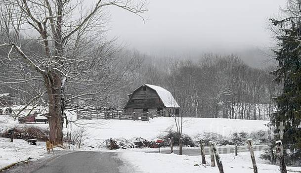 Welcome to Winter by Benanne Stiens