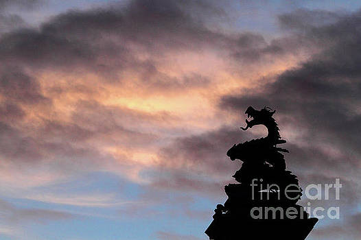 James Brunker - Welsh Dragon at Sunset 1