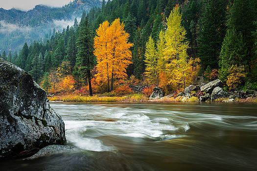Wenatchee Riverside by Dan Mihai