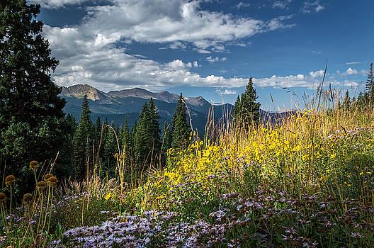 West Elk Mountain Range by Michael J Bauer