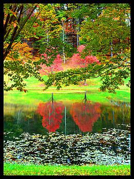 Western North Carolina by Susanne Still