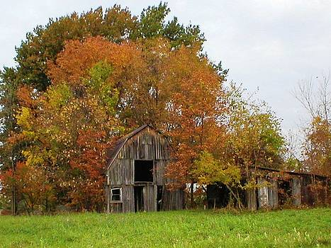 Westerville Barn by Peter  McIntosh