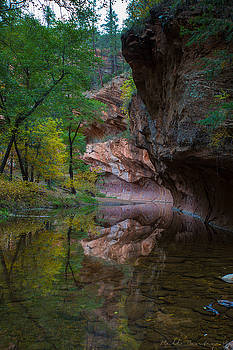 Westfork Fall Color by Bill Cantey