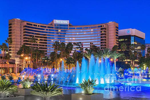 David Zanzinger - Westin Hotel Long Beach 2