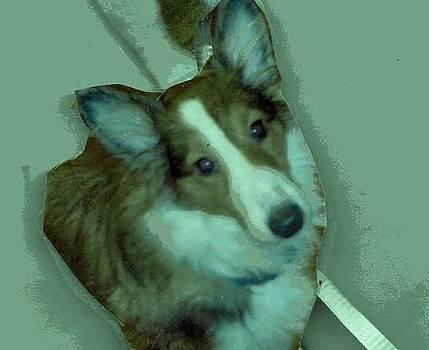 What a Sweet Pup by Anne-elizabeth Whiteway