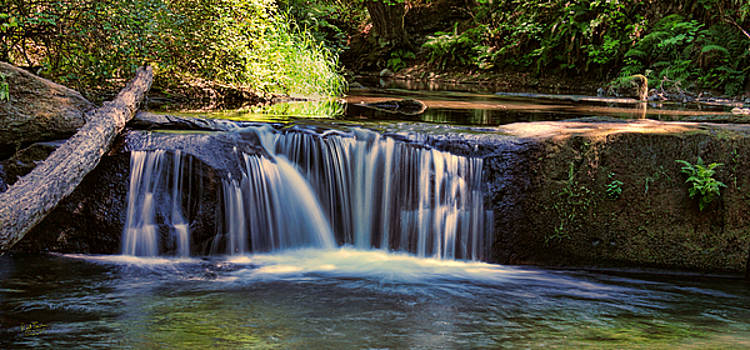 Whatcom Park Falls by Rick Lawler