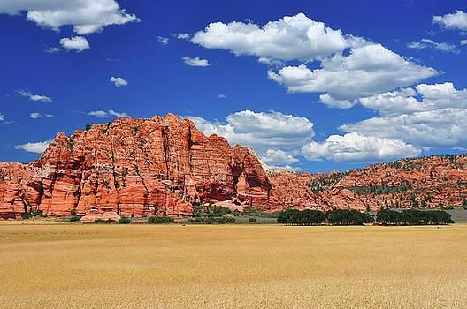 Wheat fields at Zion NP by Jay Mudaliar