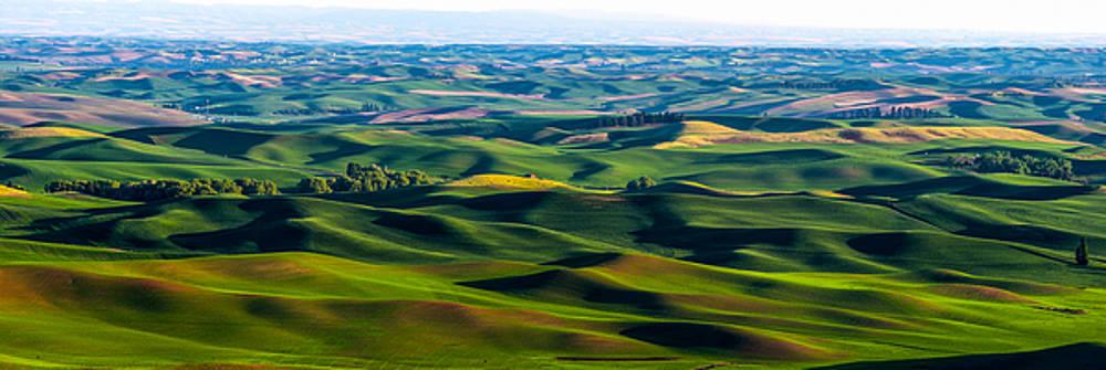 Wheat rolling hills - Palouse by Hisao Mogi