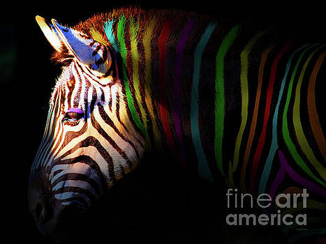 Wingsdomain Art and Photography - When Zebras Dream 7D8908