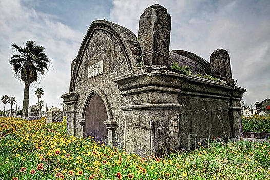 Where Have All the Graveyards Gone? by Gary Holmes