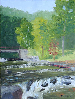 Whetstone Gulf State Park NY Stream by Robert P Hedden