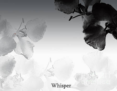Whisper by Trilby Cole