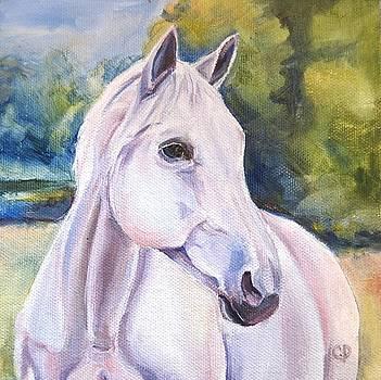 White Beauty by Carol DeMumbrum