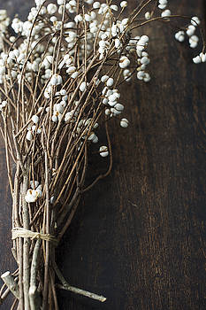 White Berry Branches by Di Kerpan