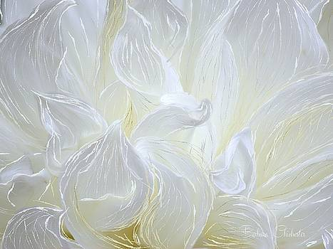 White Chrysanthemum by Barbara Chichester