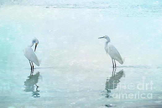 Hannes Cmarits - white cranes - blue