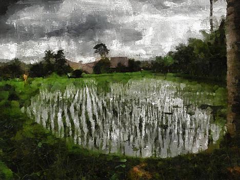 White crop by Ashish Agarwal