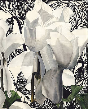 Alfred Ng - white cyclaman with butterfly