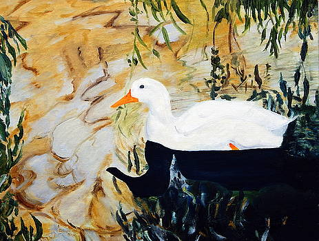 White Duck by Sylvia Riggs