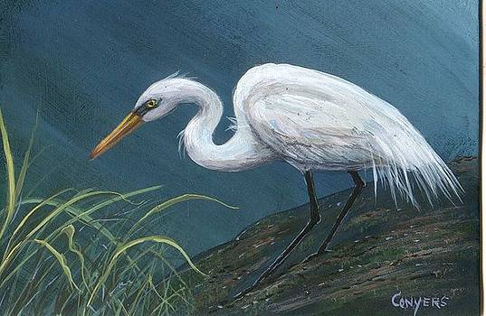White Heron by Peggy Conyers