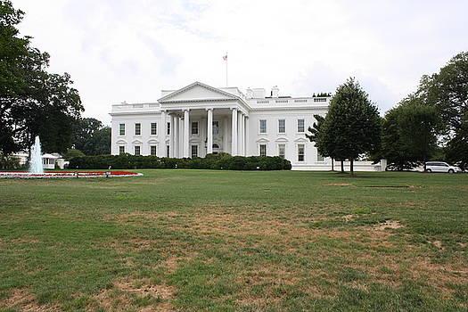 White House by Kristina Randal