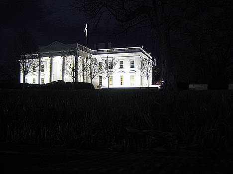 White House Light by Sean Owens