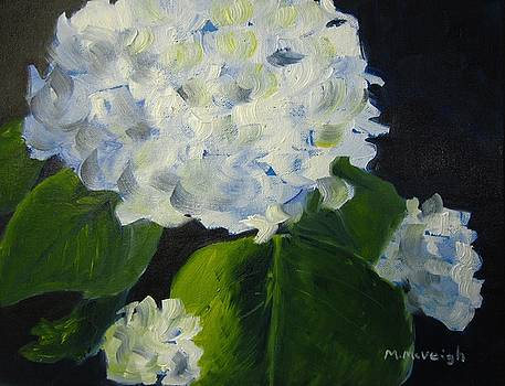 White Hydrangea by Marita McVeigh