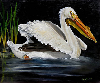 White Pelican Glide by Phyllis Beiser