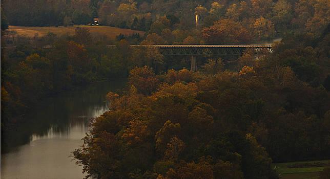 White River Foliage by Jonas Wingfield