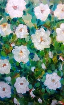 Patricia Taylor - White Rose Bush