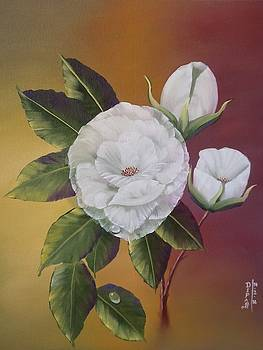 White Roses by Dipali Deshpande