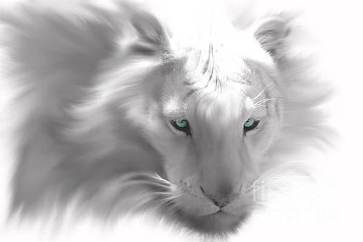 Nick Gustafson - White Tiger Ghost Stripes