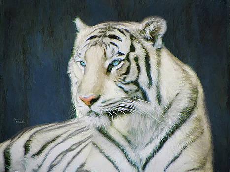 White Tiger Portrait by Sandi OReilly