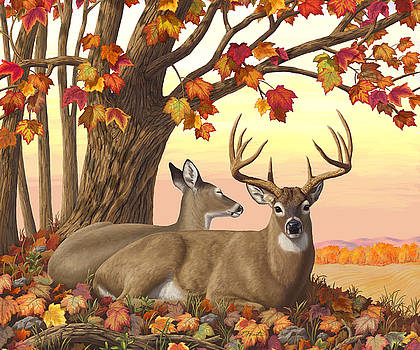 Whitetail Deer - Hilltop Retreat Horizontal by Crista Forest