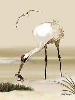 Whooping Crane by Anne Beverley-Stamps